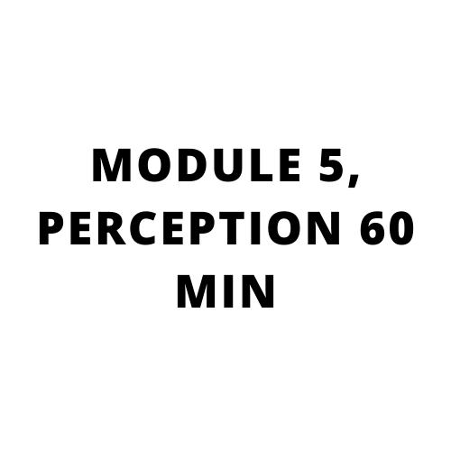 High performance sales training, Go beyond what you know: MODULE 5, PERCEPTION 60 MIN